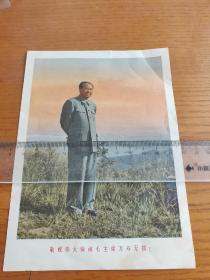 毛主席站立画像(敬祝伟大领袖毛主席万寿无疆)文革宣传画