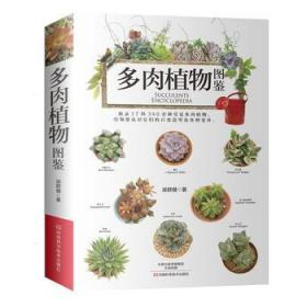 多肉植物 图鉴 正版  梁群健  9787534987120