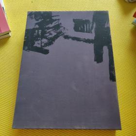 今日中国艺术家:林天行