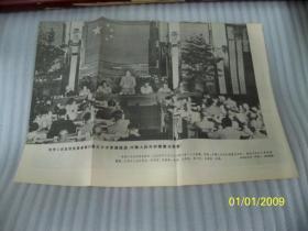 中央人民政府委员会举行第三十次会议通过《中华人民共和国宪法草案》尺寸;长36.8厘米,宽26厘米