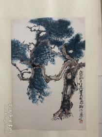 陈飞翔 松树轴