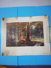 1960苏联原版油画清晨的树林长58宽46厘米【莫斯科国家美术出版社】