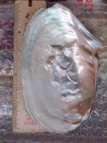 珍珠蚌 人工培育珍珠 異形珍珠 【人物】濟公