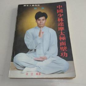 中国少林达摩面壁功法【佛家上乘功法,第一卷】书如图