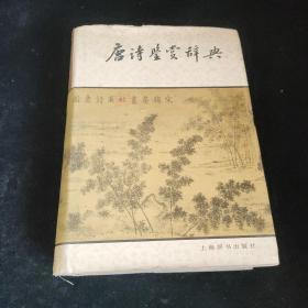 唐诗鉴赏辞典*