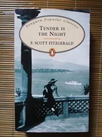 夜色温柔 Tender is the Night
