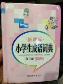 【硬精装】小学生成语词典   多功能彩色版  万森  湖南教育出版社9787535561848