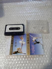 芭蕾舞剧 天鹅湖 磁带