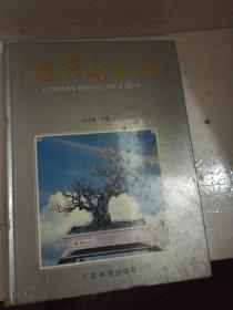 中国岭南盆景