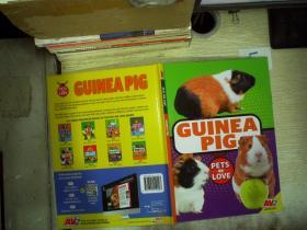 pets we love guinea pig 宠物,我们喜欢豚鼠