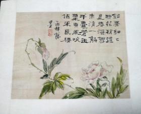 清代佚名绢本花卉小品