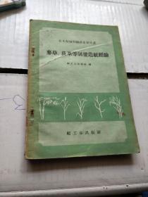 非木材植物线维造纸丛书:麦草.荻草等制浆造纸经验