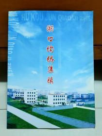 湖口一热烈祝贺湖口县文桥乡政府大楼落成纪念  邮票