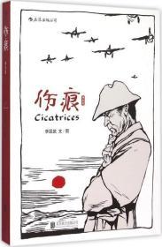伤痕(增补版)漫画 影像集 抗日战争 日军侵华 家国伤痕 历史资料 二战 政治 军事 经济 社会