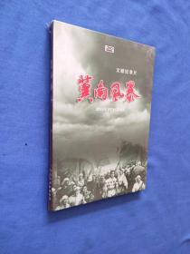 冀南风暴 文献纪录片 DVD 全新未开封