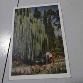 五十年代苏联明信片