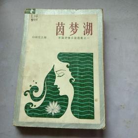 茵梦湖 外国抒情小说选集之一。