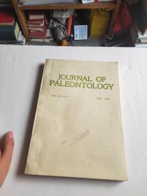 journal of paleontology