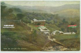 清末民国早期锡兰的立顿茶园明信片---茶厂车间厂区全景,厂房上写有LIPTON字样