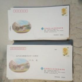 80分普通邮资封2007-1401PF0001菊花 南昌航空工业学院科技学院邮资封100枚(其中有收件人地址姓名的74枚、其它26枚)
