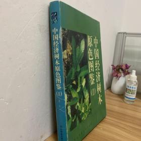 中国经济树木原色图鉴.(Ⅱ)