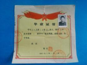 毕业证书 云南省保山县西邑人民公社中心小学 贴有照片