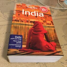 Lonely Planet India (14th Edition)