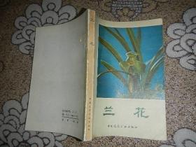 兰花【1984年一版一印】