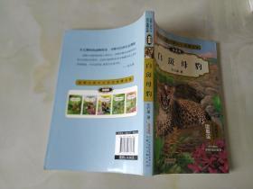 动物小说大王沈石溪精品集:白斑母豹(拼音版)