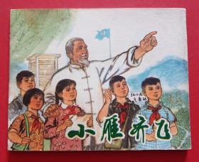 小雁齐飞(文革书)