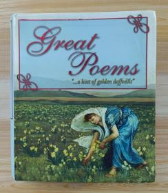 英文原版书 Great Poems: A Wide Selection of Favorite Poems to Suit Everyone (Visual Factfinder) / Kate Miles (Author)