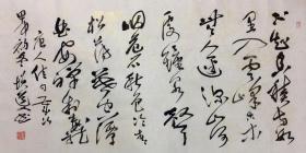 刘志安:(书法保真)