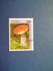 外国邮票 几内亚邮票 1996年 蘑菇 (盖销)