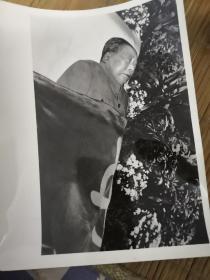 毛泽东去世照片(共24张)