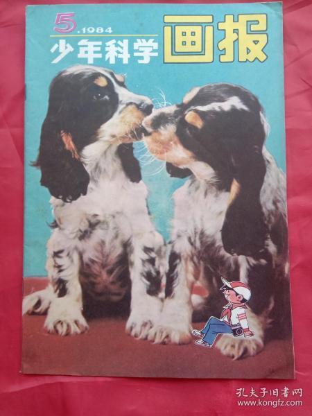 少年科学画报(1984年第5期),
