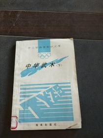 中华武术(下)