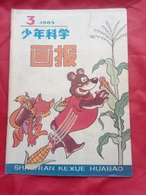 少年科学画报(1985年第3期),