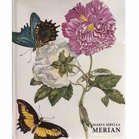 原版maria sibylla merian梅里安作品集画册植物昆虫彩色手绘绘本