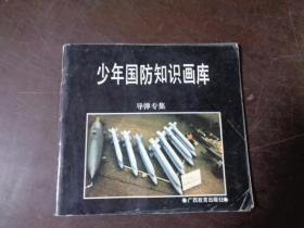 少年国防政治画裤(导弹专集)