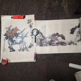 潘天寿  中国画 年画:竹菊、映日荷花别样红(70年代)4开