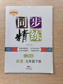 名师小课堂:同步精练 历史 九年级 下册(人教版)【附单元测试与评价+参考答案】(B412)