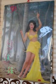 1993年塑纸挂历·椰林妹【13张全】