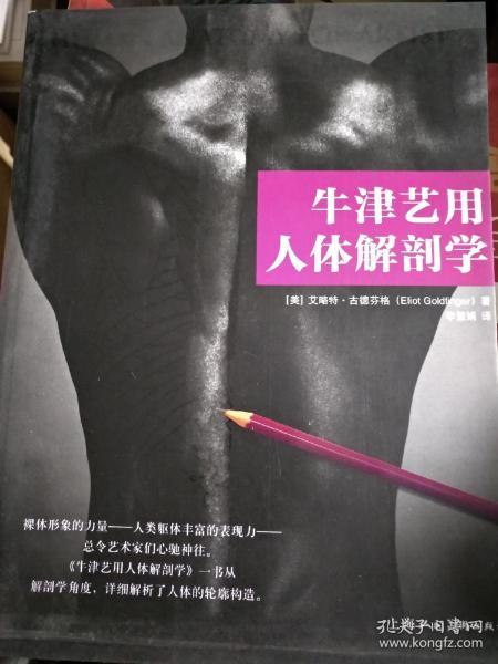 牛津艺用人体解剖学