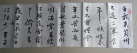 史海亮老师书法(苏东坡寒食帖):( D2书架)