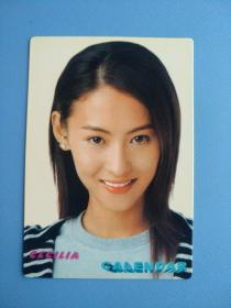 张柏芝  (明星小画片,2004年)
