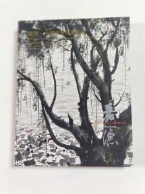 观想一中国书画四海集珍图录  2013年