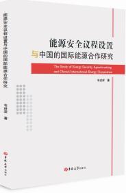能源安全议程设置与中国的国际能源合作研究