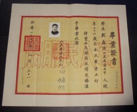1953年-山东医学院-毕业证书-照片+钢印-品相好