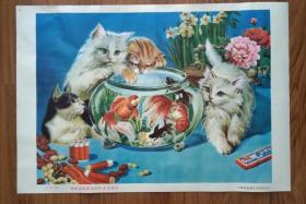 中国农业银行天津分行储蓄能够使您的生活更美好宣传画《金鱼小猫》