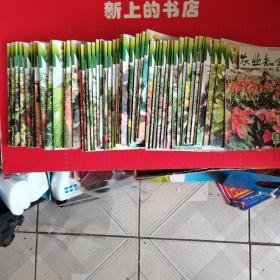 农业知识:瓜果菜,2013年2一12期∥2014年1一12期∥2015年1一4,6一I2册∥2016年1一7,9,12册∥2017年1一3,6一I2册
